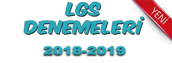 LGS_2018_2019