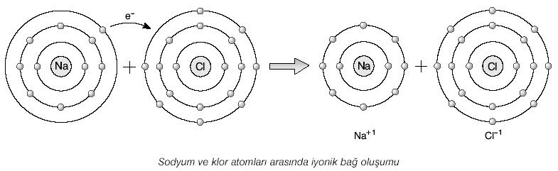 http://www.fenokulu.net/image007.png